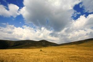 Transalpina Dramatic Landscape