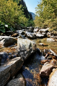 Latorita River