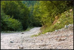 Access road to Scarisoara