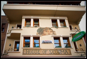The House of Zeugma