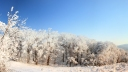 Winter Panorama (1080p)