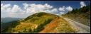 Leaota Landscape